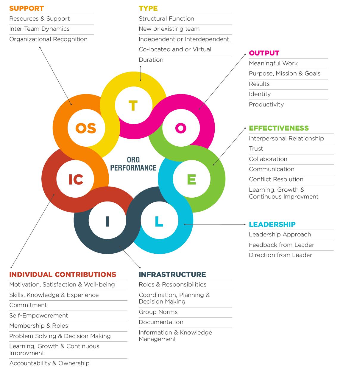 Survey Overview - Team Assess